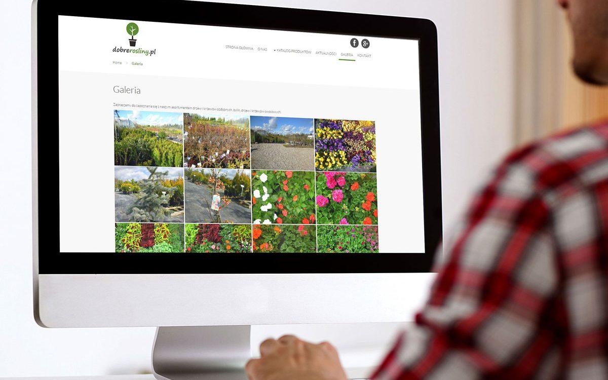 Dobre Rośliny - Projektowanie stron www - Białystok