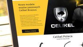 Strona internetowa – www.celikel.pl
